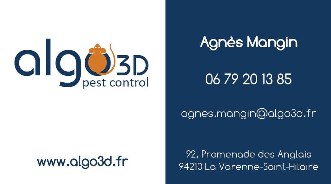 CARTE VISITE ALGO3D