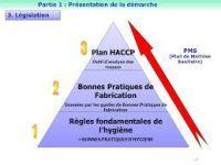plan de lutte contre les nuisibles dératisation, désinsectisation paris et Ile de France algo3d